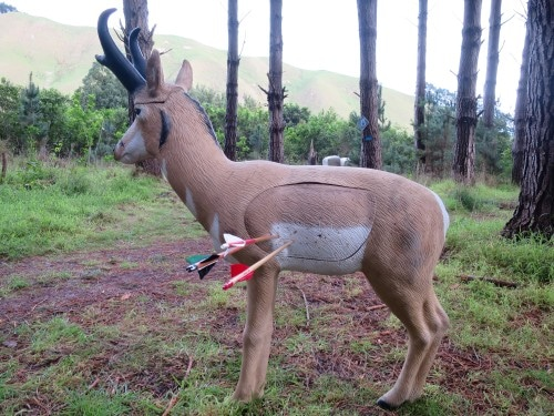 3d archery target with arrows.