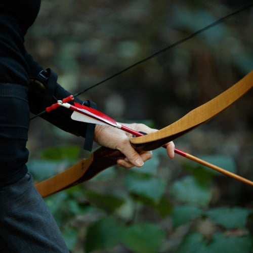 Archery Park Nelson Longbow and arrow close-up