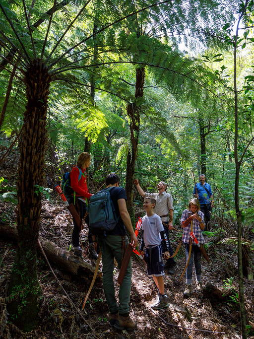 People learning about trees and the New Zealand flora and fauna