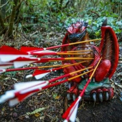 3D dragon archery target full of arrows at Archery Park Nelson
